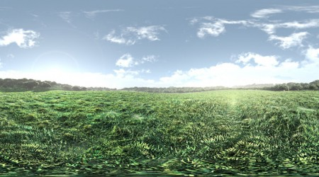 HDRI green savanna