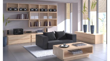 lounge and contemporary furniture