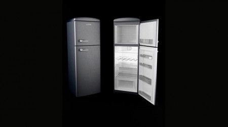 Fridge Gorenje RF623